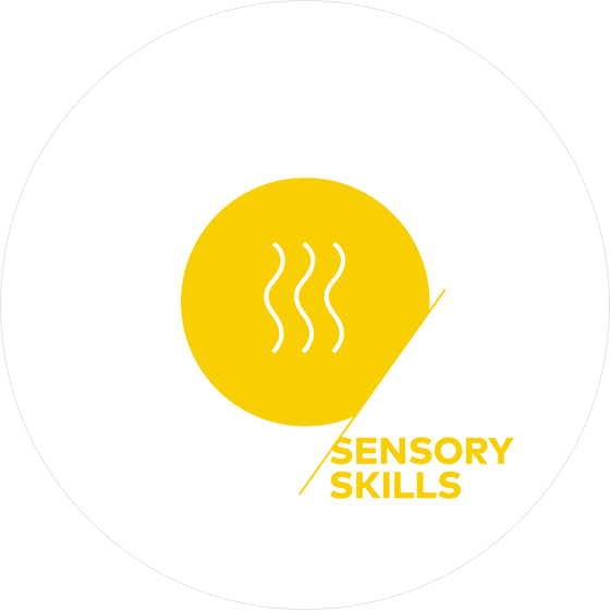 sca_sensory_skills_v_1.png